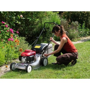 Cut Grass Honda - Hobbies